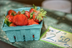 Grab a bucket and go pick some of your own at Dempsey Farms.  Photo by Andrew Branning.