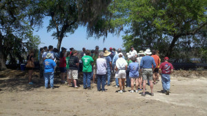 Volunteers, SCDNR build oyster reef on Lady's Island