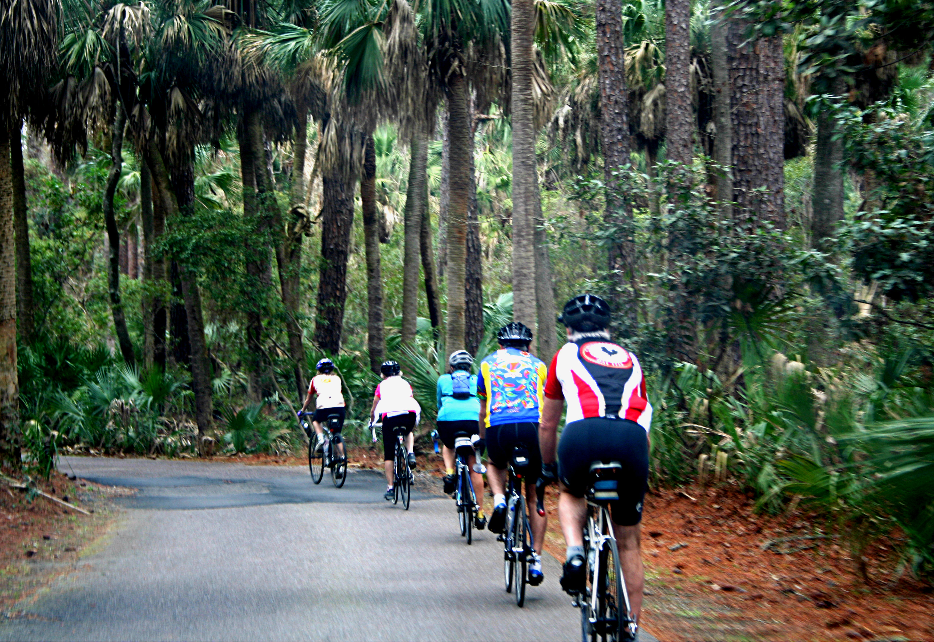 Hunting Island offers lots of options. Bicycling, hiking along one of the trails, going for a challenging run on the beach or even taking a stroll while searching for shells