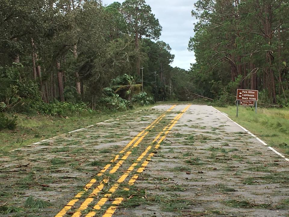 Due to extensive damage from Hurricane Matthew, nearly all of Hunting Island State Park will be closed through December 31st, 2016. Damage photo taken October 9th by Kim Sullivan