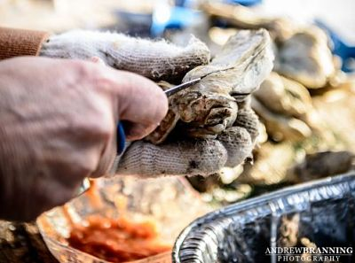 Lowcountry Oyster Roasts