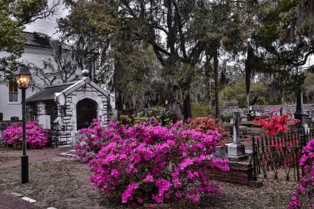 Springtime at the Parish Church. Photo by Phil Heim