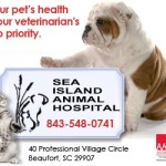 Sea Island Animal Hospital