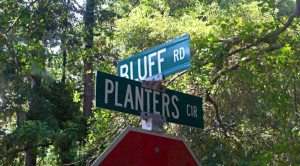 Neighborhood Watch: Lady's Island's Bluff Farm