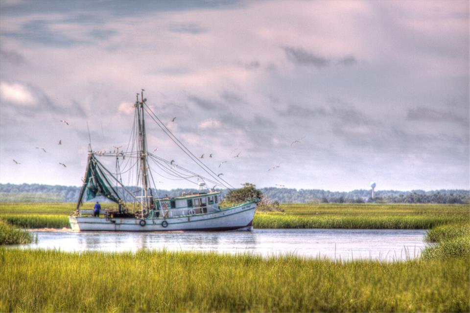 Beaufort Slang: How to Speak Like a Local