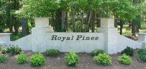 Community Spotlight on Royal Pines by Will McCullough