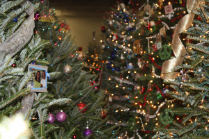 Celebrate the season with Festival of Trees