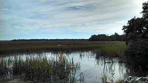 Pleasant Point Plantation is blessed with an abundance of beautiful marsh views