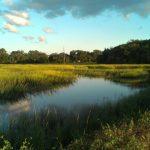Amazing views along the Spanish Moss Trail.  Photo by Layla Manning