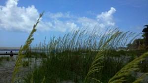 Hunting Island Beach ranked #7 in U.S.  Photo ESPB