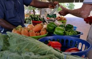 Downtown Beaufort's Farmers Market opens its season