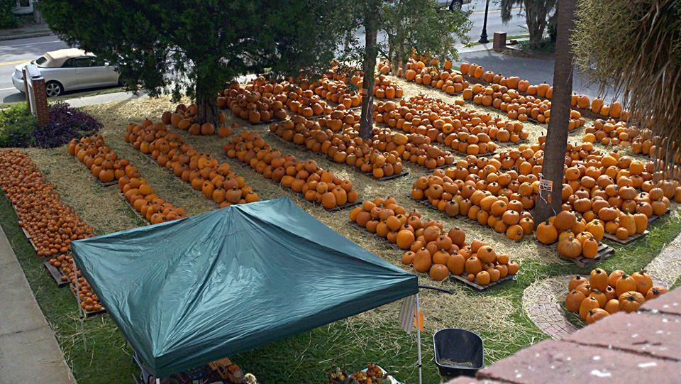 The Pumpkin Patch at Carteret Street UMC in downtown Beaufort opens Monday, September 29th.