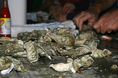 TCL Foundation to host oyster roast and 5K fundraiser for students, programs