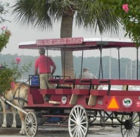 Local carriage tour company under new ownership