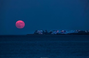 Supermoon over Harbor Island, 2014  Photo courtesy Phil Heim