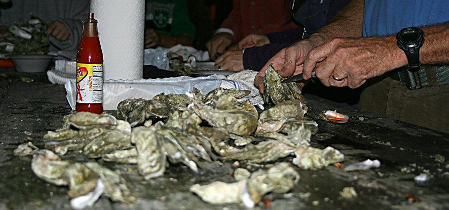 oysterroaststockimage910