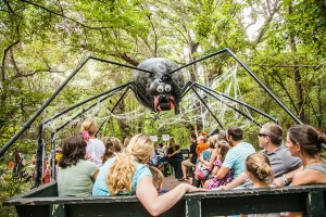 Boone Hall Pumpkin Patch offers lots of fall fun.