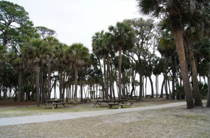 Packing a picnic and heading down to Hunting Island Beach can prove to be a real treat.