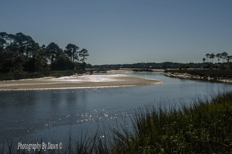 The lagoon at Hunting Island is a popular destination. Photo by Dawn Ramsey