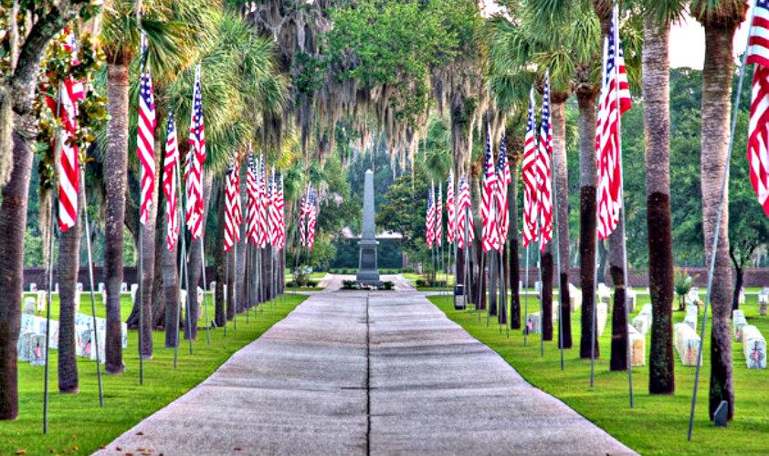 Honoring all veterans on veterans day