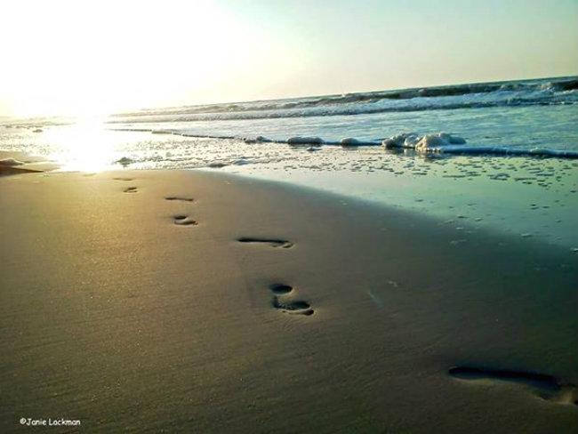 frippfootprints11