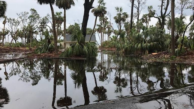 Flooding from heavy rais this week is delaying the reopening of Hunting Island State Park.  Photo courtesy SC Department of Parks Recreation and Tourism