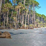 Major beach renourishment project proposed at Hunting Island