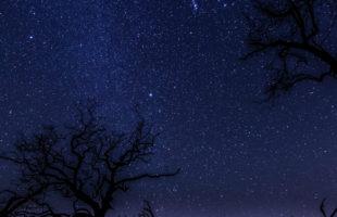 starryhuntingislandbydelkhaiglerphotography1