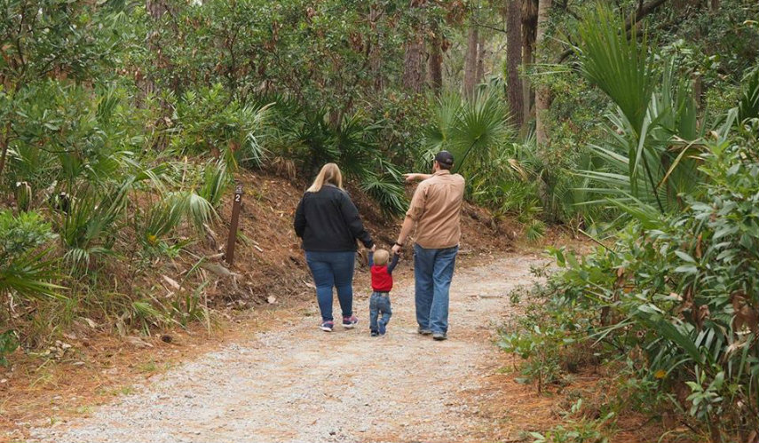 Nature and hiking trails at Hunting Island finally reopen