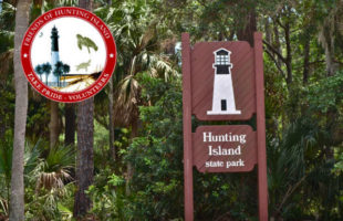 friends of hunting island