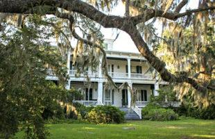 paul hamilton house