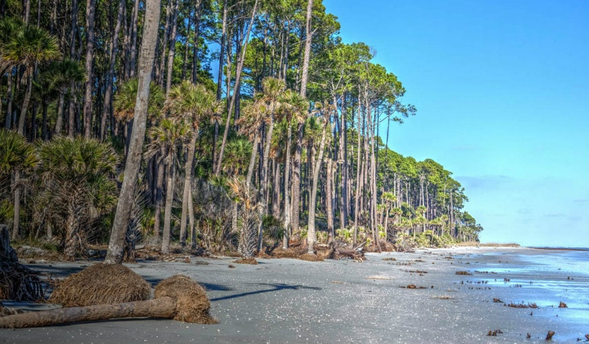 Changes Coming To Hunting Island