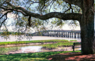 ten things beaufort