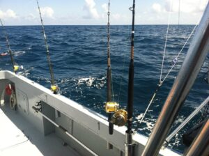 Seawolf Fishing Charters