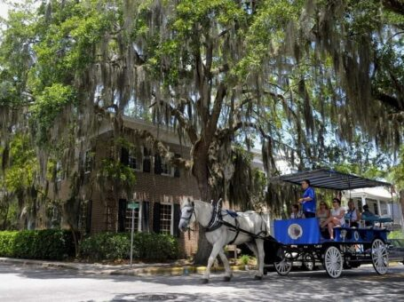 Southurn RoseCarriage Tours