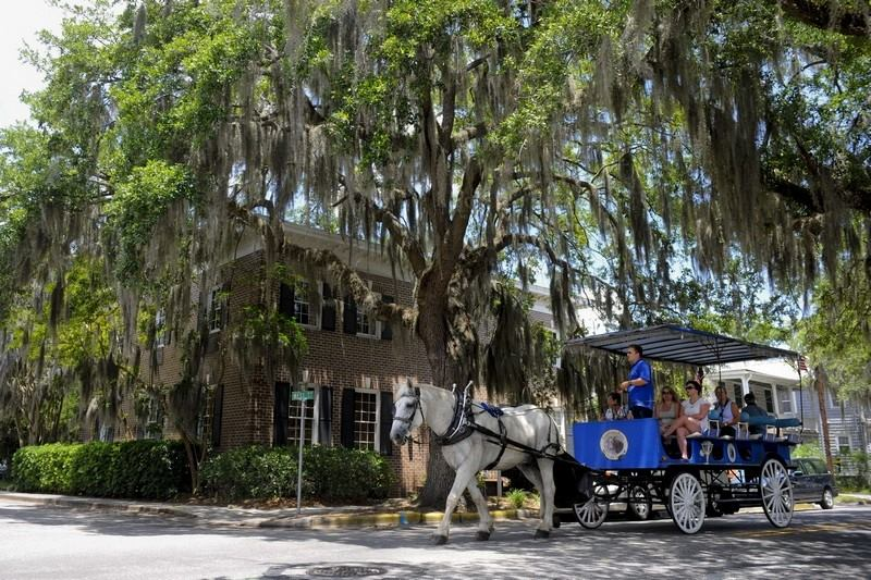 Southurn Rose Carriage Tours