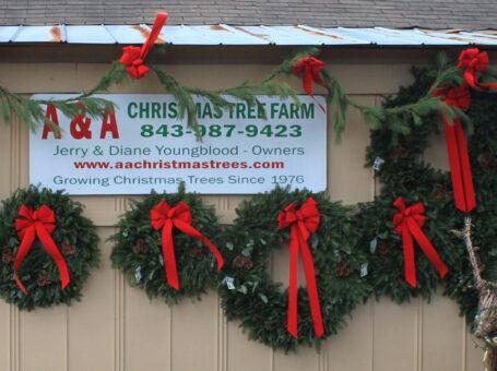 A&A Christmas Trees